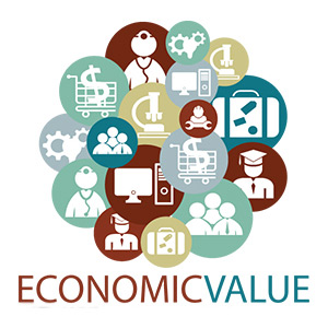 economic_value_300